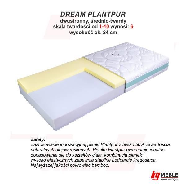 Dream Plantpur